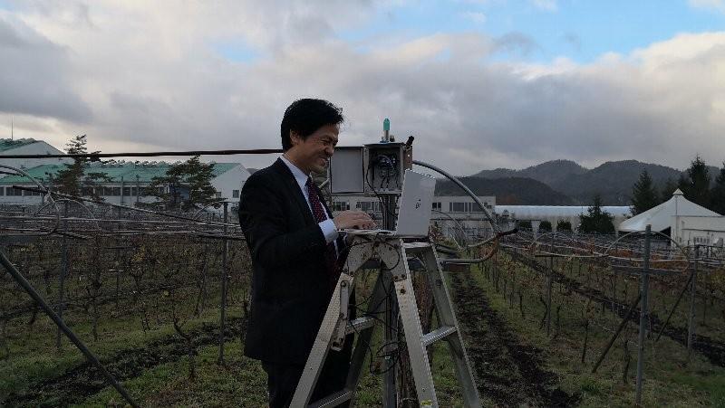丹波ワイナリー農業IoT設置